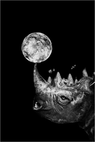 Poster Rhino Space