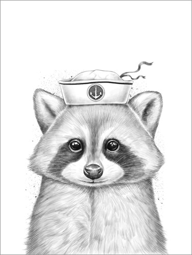 Poster Premium Raccoon sailor