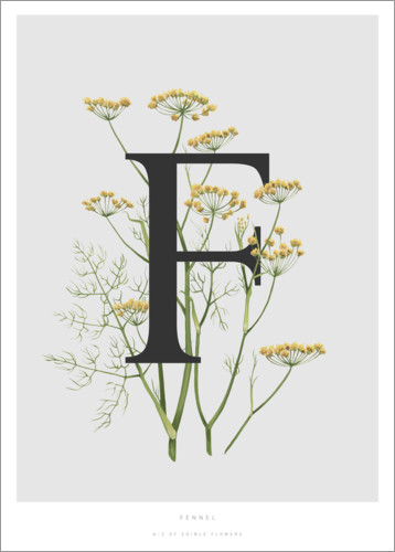 Poster Premium F is for Fennel