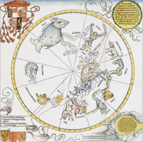Adesivo murale Map of the Southern Sky. 1515