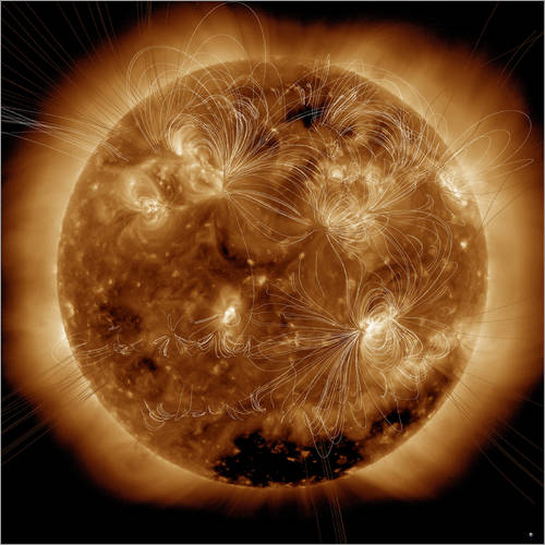 Adesivo murale Magnetic field lines on the Sun