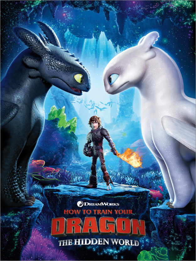 Poster Premium Dragon Trainer - Toothless & Light Fury