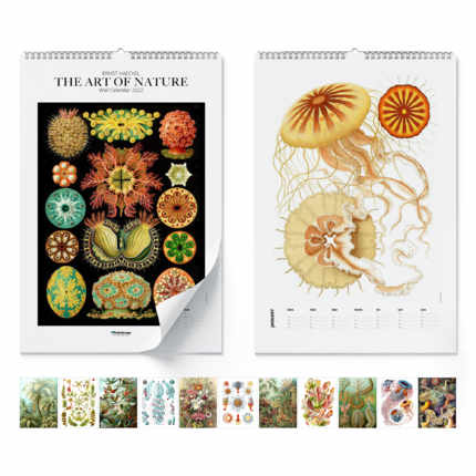 Calendario da muro Ernst Haeckel, The Art Of Nature 2021