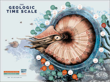Stampa su tela  The geologic time scale - Velozee
