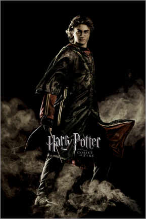 Poster Premium  The Goblet of Fire (Harry Potter e il calice di fuoco)
