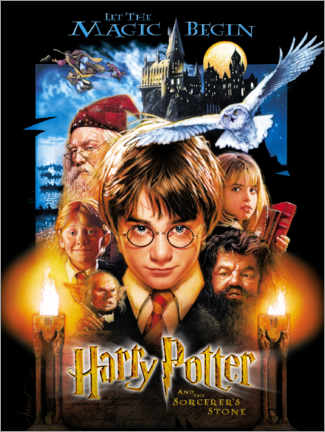 Poster Premium  Harry Potter and the Sorcerer's Stone (Harry Potter e la pietra filosofale)