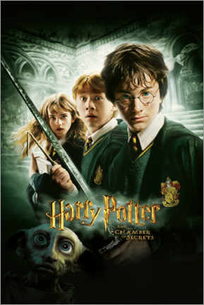 Poster Premium  Harry Potter and the Chamber of Secrets (Harry Potter e la camera dei segreti)