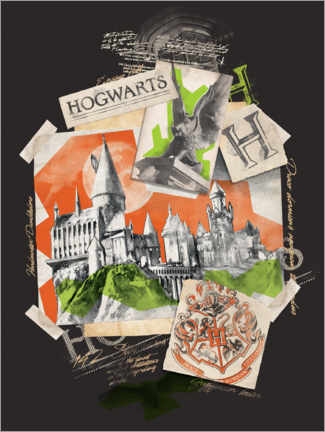 Poster Premium  Hogwarts School of Witchcraft and Wizardry