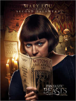 Poster Premium  Fantastic Beasts and Where to Find Them - Mary Lou Barebone
