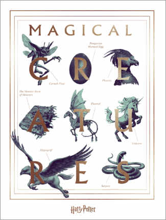 Poster Premium  Harry Potter - Magical Creatures
