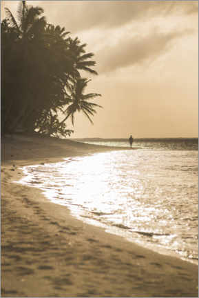 Poster Premium  Tramonto tropicale con palme - Matthew Williams-Ellis