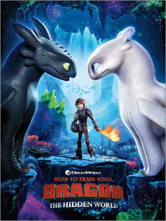 Stampa su tela  Dragon Trainer - Toothless & Light Fury