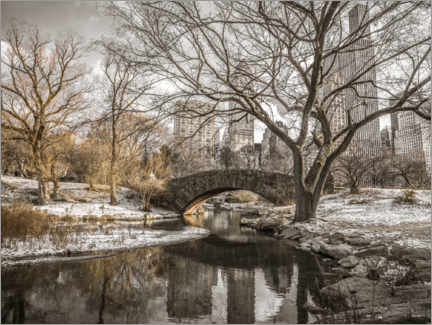 Poster Premium  Central Park New York in winter - Assaf Frank