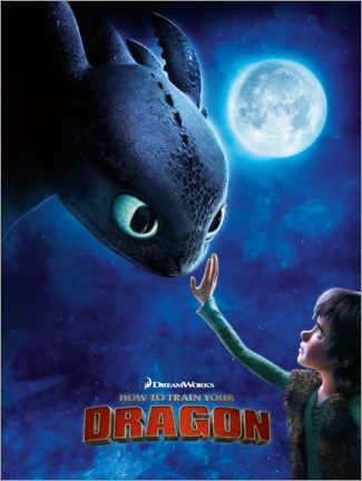 Stampa su alluminio  How to train your dragon (Dragon Trainer)