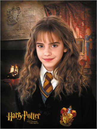 Poster Premium  Hermione and the Chamber of Secrets