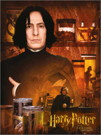 Poster Premium Severus Snape and the Chamber of Secrets