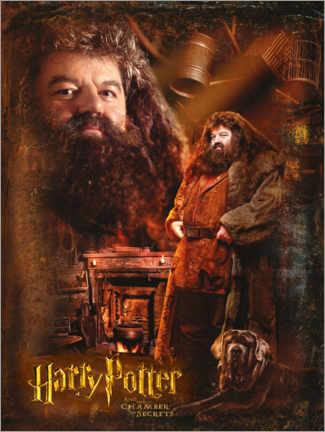 Poster Premium Rubeus Hagrid and the Chamber of Secrets