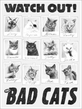 Poster Premium  Watch out for bad cats - Janta Island