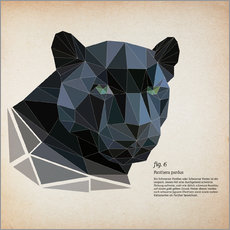 Adesivo murale  fig6 polygon Panther square - Labelizer