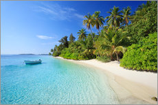 Stampa su plexi-alluminio  Tropical beach with palms, Maldives - Matteo Colombo