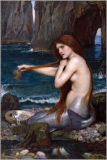 Stampa su plexi-alluminio  La sirena - John William Waterhouse