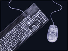 Adesivi murali  Keyboard and mouse, simulated X-ray - Mark Sykes