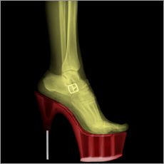 Adesivi murali  X-ray Stiletto High-Heeled Shoe - PhotoStock-Israel