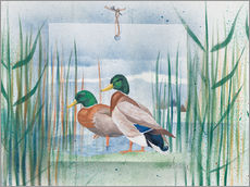 Adesivo murale  Pair of wild ducks - Franz Heigl