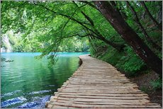 Stampa su plexi-alluminio  Plitvice Lakes National Park Boardwalk - Renate Knapp