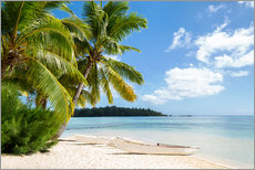Stampa su plexi-alluminio  Beach with palm trees and turquoise ocean in Tahiti - Jan Christopher Becke