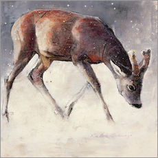 Adesivi murali  Jung deer in winter - Mark Adlington