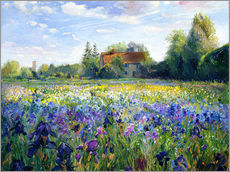 Stampa su plexi-alluminio  Field of flowers in the sunset - Timothy Easton