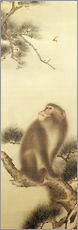 Adesivi murali  Monkey watching a dragonfly - Japanese School