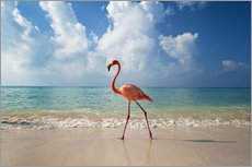 Adesivo murale  Flamingo on the beach - Ian Cuming