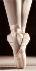 Adesivi murali  Ballet Shoes - Don Hammond