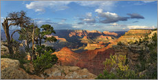 Michael Rucker - Grand Canyon with knotty pine