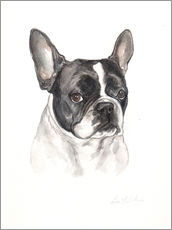 Adesivi murali  French bulldog, black-white - Lisa May Painting