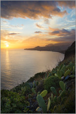 Stampa su plexi-alluminio  Bay of Funchal at Sunset, Madeira - Markus Kapferer