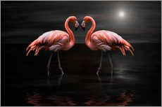 Stampa su plexi-alluminio  Flamingos at night - Heike Langenkamp