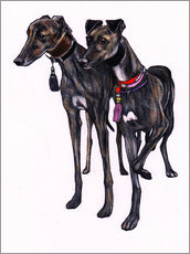 Adesivi murali  Brindle greyhounds - Jim Griffiths