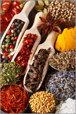 Adesivo murale  Colorful aromatic spices and herbs