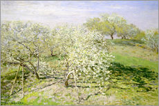 Adesivi murali  Spring, flowering apple trees - Claude Monet