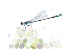 Adesivi murali  Dragonfly Building - Verbrugge Watercolor