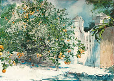 Stampa su plexi-alluminio  Orange Trees and Gate - Winslow Homer
