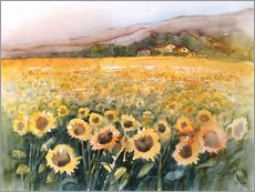 Adesivi murali  Sunflower field in the Luberon, Provence - Eckard Funck