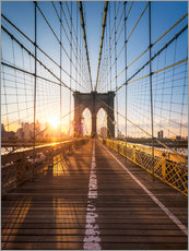 Stampa su plexi-alluminio  Brooklyn Bridge in the sunlight in New York City, USA - Jan Christopher Becke