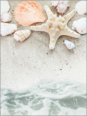 Stampa su plexi-alluminio  Sea Beach with starfish
