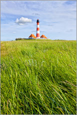 Westerhever in summer