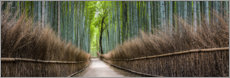 Adesivo murale  Bamboo Forest Panorama in Sagano Arashiyama in Kyoto, Japan - Jan Christopher Becke
