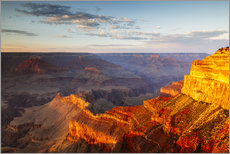 Stampa su plexi-alluminio  Sunset on Grand Canyon South Rim, USA - Matteo Colombo